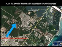 Homes for Sale in Playa del Carmen, Quintana Roo $4,770,000