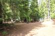 Lots and Land Sold in Angel Island, Troy, Montana $69,900