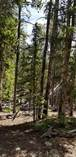 Lots and Land for Sale in Fairplay, Colorado $49,000