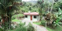 Homes for Sale in Ojochal, Puntarenas $99,000