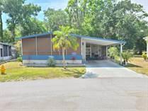 Homes Sold in Woodbrook Estates, Lakeland, Florida $39,900
