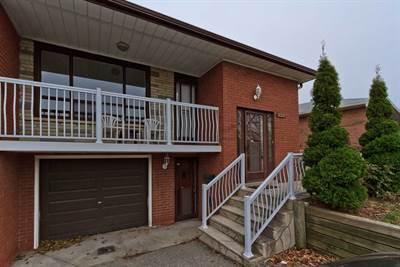 233 Hullmar Dr, Suite Basement, Toronto, Ontario