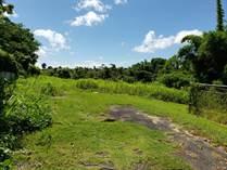 Lots and Land for Sale in BO. VOLADORA MOCA, Moca, Puerto Rico $45,000