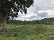 Lots and Land for Sale in Bo Fronton, Ciales, Puerto Rico $985,000