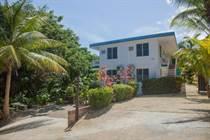 Multifamily Dwellings for Sale in Puntas, Rincón , Puerto Rico $835,000