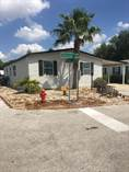 Homes for Sale in Strawberry Ridge, Valrico, Florida $34,900