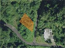 Lots and Land for Sale in Victoria, Aguadilla, Puerto Rico $31,179
