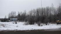 Lots and Land for Sale in Darwell, Alberta $24,900