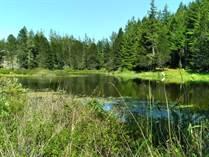 Homes Sold in Lake Limerick, Shelton, Washington $399,900