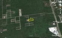 Lots and Land for Sale in Komchen, Merida, Yucatan $550,000