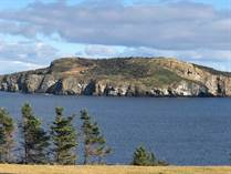 Lots and Land for Sale in Bauline East, Newfoundland and Labrador $259,900