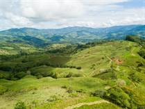 Farms and Acreages for Sale in Platanillo, Puntarenas $1,500,000