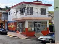 Commercial Real Estate for Sale in Pueblo Ward, Rincon, Puerto Rico $225,000