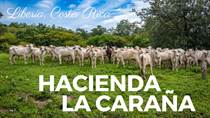 Farms and Acreages for Sale in Liberia, Guanacaste $4,560,000