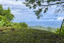 Lots and Land for Sale in Uvita, Puntarenas $225,000