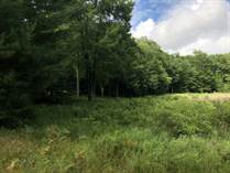 Lots and Land for Sale in Filer Township, Michigan $35,000