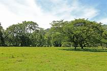 Lots and Land for Sale in Barú, Puntarenas $695,000