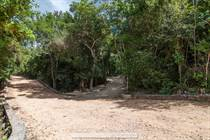 Lots and Land for Sale in Tulum, Quintana Roo $65,000