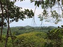 Lots and Land for Sale in Damas, Quepos, Puntarenas $405,000