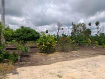 Lots and Land for Sale in Consejo, Corozal $17,500