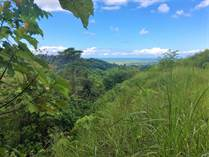 Lots and Land for Sale in Ojochal, Chontales, Puntarenas $64,900
