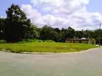 Lots and Land for Sale in Bo. Valenciano Abajo, Juncos, Puerto Rico $49,500