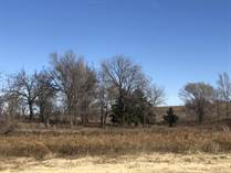 Farms and Acreages for Sale in Wheeler County, Shamrock, Texas $640,000