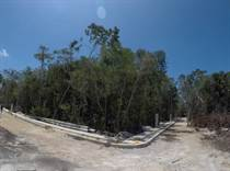 Lots and Land for Sale in Region 15, Tulum, Quintana Roo $164,000