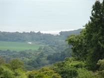 Lots and Land for Sale in Lagunas, Puntarenas $99,500