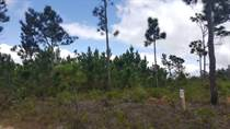 Lots and Land for Sale in Mountain Pine Ridge, Cayo $9,700
