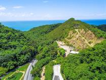 Lots and Land for Sale in Bo. Caguabo, Anasco, Puerto Rico $425,000