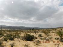 Lots and Land for Sale in Yucca Valley, California $25,000