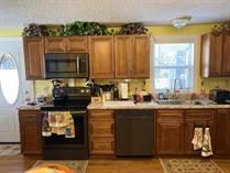 Homes for Sale in Shadowwood Village, Hudson, Florida $49,900