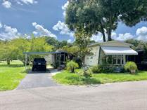 Homes for Sale in Unnamed Areas, Thonotosassa, Florida $10,900