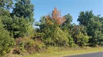 Lots and Land for Sale in Wisconsin Dells, Wisconsin $44,900