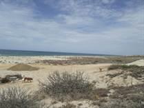Homes for Sale in Playa Colorado , La Ribera, Baja California Sur $110,000