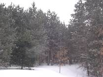 Lots and Land for Sale in Dickson Township, Michigan $53,500