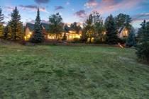 Homes for Sale in Sedalia, Colorado $2,250,000