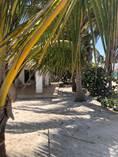 Homes for Sale in San Crisanto, Yucatan $1,350,000
