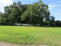 Lots and Land for Sale in Wewahitchka, Florida $20,000