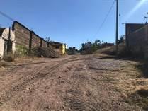 Lots and Land for Sale in Guanajuato City, Guanajuato $125,000