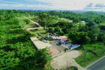 Farms and Acreages for Sale in Camalote Village, Cayo $330,000