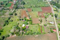 Lots and Land for Sale in San Carlos, Alajuela $130,000