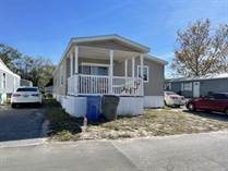 Homes for Sale in Lamplighter On The River, Tampa, Florida $62,500