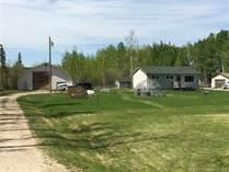 Homes for Sale in Alberta, Greenview MD, Alberta $249,000