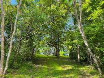 Lots and Land for Sale in Playa Negra, Guanacaste $139,000