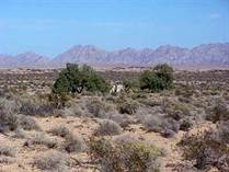 Lots and Land for Sale in Las Lagrimas, Puerto Penasco/Rocky Point, Sonora $78,000