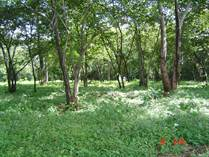 Lots and Land for Sale in Playa Avellanas, Guanacaste $200,000