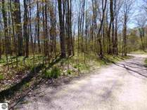 Homes for Sale in Echo Township, East Jordon, Michigan $19,900