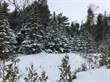 Lots and Land for Sale in Lion's Head, Ontario $52,000